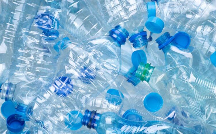 What Are the Effects of Non-Biodegradable Plastic Bottle Waste?