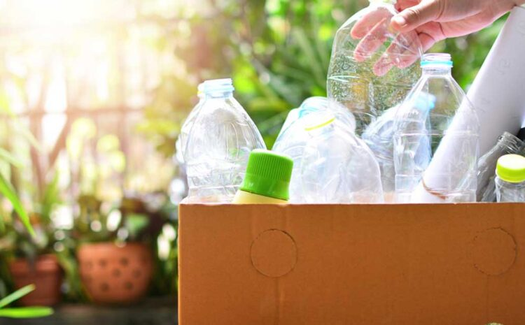 Are Supermarkets Doing Sufficient to Minimize Single-Use Plastic Waste?