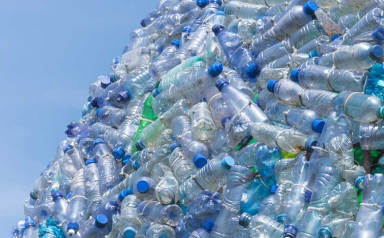 DIFFERENT COUNTRIES HANDLING THE PLASTIC PROBLEM