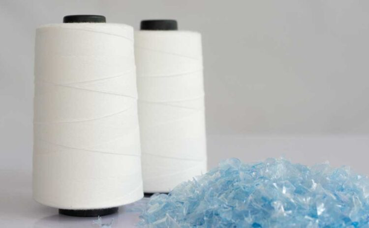 THE FUTURE OF WATER BOTTLES